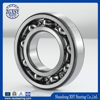 China Manufacturer Deep Groove Ball Bearing6317rs