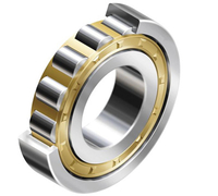 Single Row Chorme Steel Cylinderical Roller Bearing (NU, NJ, NUP and N)