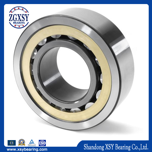 Cylindrical Roller Bearing N209e Rolling Mill Bearings