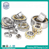 Single Row Full Complement Cylindrical Roller Bearing N2217e