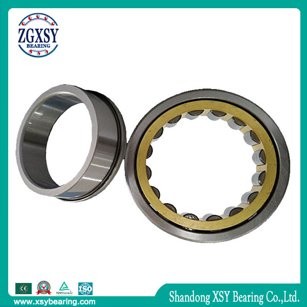 Zgxsy Cylindrical Roller Bearing NF217m Printing Machine Bearing