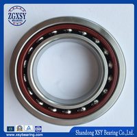 Hot Sale! High Precision Angular Contact Ball Bearing 7300AC Series